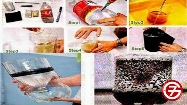 للناموس والذباب .. أفضل 10 طرق سحرية وطبيعية لطرد الناموس والذباب 1