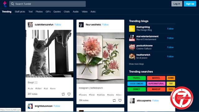 منصة Tumblr تحتوي على خلفيات مدهشة
