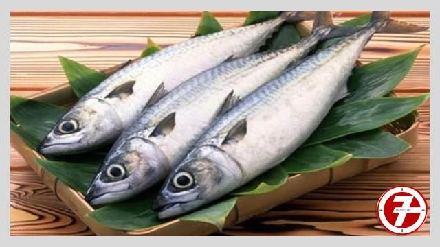 سمك القاروص المشوي بالخضار السوتيه
